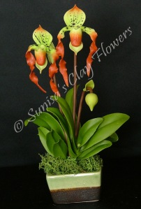 Paphiopedilum Lady Slipper #17, 9 x 5 inches, $40