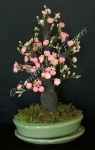 (SOLD OUT) Cherry Blossom Bonsai, 16 x 10 inches, $225