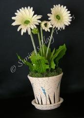 Daisy #01, 14 x 8 inches, $75