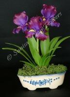 Iris #05, 8 x 4 inches, $45