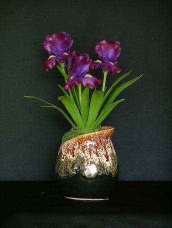 Iris #10 10 x 9 inches $65