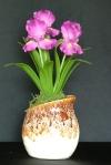 Iris #11 10 x 9 inches $65