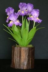 Iris #09 $55
