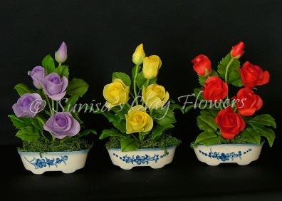 Rose #01, 6 x 4 inches each, $40 each