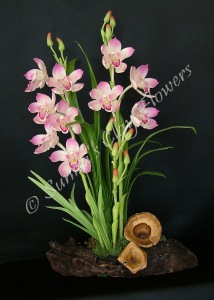 (SOLD OUT) Cymbidium #05, 21 x 13 inches, $245
