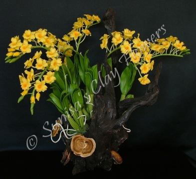 (SOLD OUT) Dendrobium thyrsiflorum #04, 19 x 17 inches $325