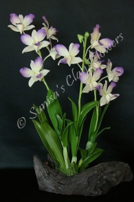 (SOLD OUT) Dendrobium #03, 17 x 9 inches