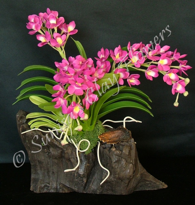 (SOLD OUT) Rhynchostylis Gigatea #02, 11 x 9 inches, $195